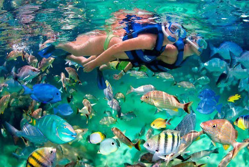 3-reef-snorkel-cozuemel-01